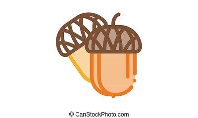 acorn nut Icon Animation. color acorn nut animated icon on white background