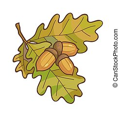 Acorn on oak branch with leaves.