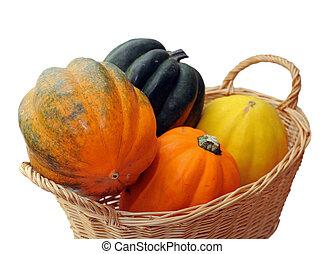 acorn squash in basket isolated on white