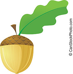 acorn. vector - Vector acorn with leaf on a white background