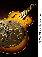 Acoustic Guitar - A rare acoustic resonator guitar on black