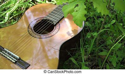 Acoustic guitar in the woods. - Acoustic guitar on the green...