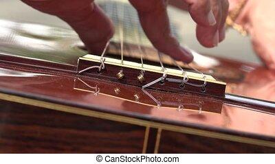 Acoustic Guitar Strings