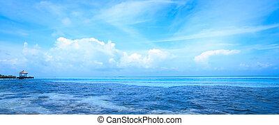acqua blu, maldive, mare, tropicale