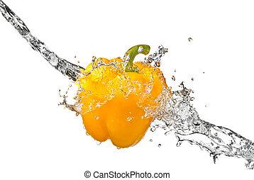 acqua dolce, schizzo, su, giallo, pepe dolce, isolato, bianco