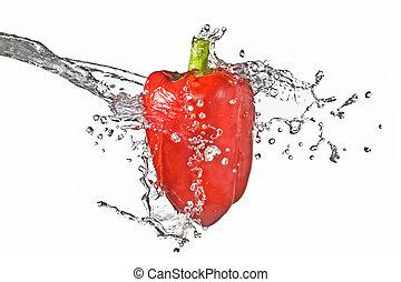 acqua dolce, schizzo, su, rosso, pepe dolce, isolato, bianco