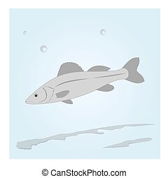 acqua, fish