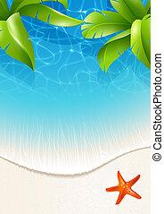 acqua, foglie, palma, sopra