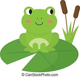 acqua, lily., rana verde, carino, seduta, felice