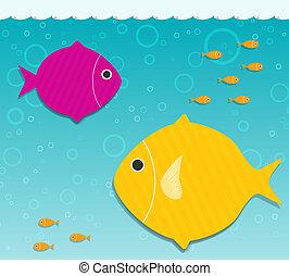 acqua, pesci grandi, due