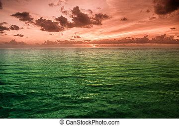 acqua tropicale, maldive, mare