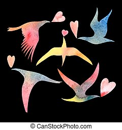 acquarello, amanti, uccello
