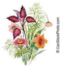 acquarello, azzurramento, giardino, fiori, illustrazione