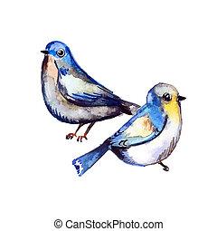 acquarello, carino, design., tuo, uccelli