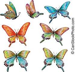 acquarello, carino, pittura, collezione, butterflies.
