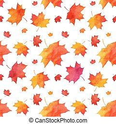 acquarello, dipinto, modello, foglie, autunno, acero, rosso