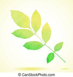 acquarello, dipinto, vettore, verde, cenere