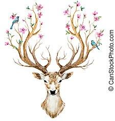 acquarello, disegnato, cervo, mano