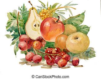acquarello, flora, collection:, frutte