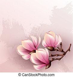 acquarello, magnolia, ramo, illustrazione