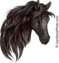 acquarello, ritratto, cavallo, nero, testa