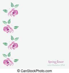acquarello, rose, cornice, fiori
