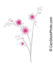 acquarello, schizzo, vettore, orchidea
