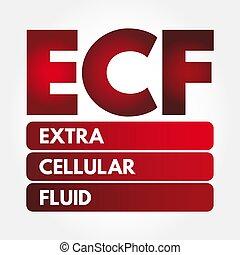 acrônimo, -, extracellular, ecf, fluido