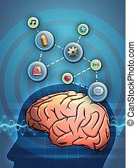 actief, hersenen