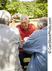 actiefs seniors, groep, van, oude vrienden, speelkaarten, op, park