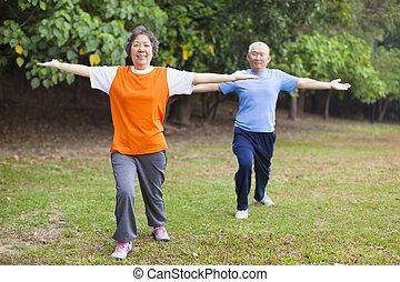 actif, gymnastique, couple, parc, personne agee