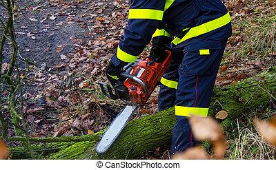 action, pompiers, après, venteux, orage