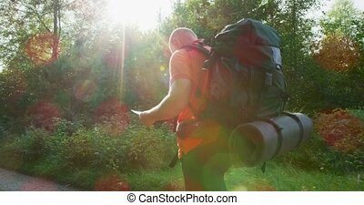 Active man hiking using map and compass in beautiful forest...