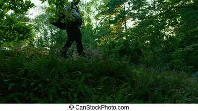 Active man with backpack walking on path in beautiful forest...