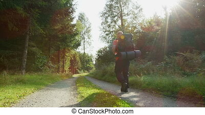 Active man with large backpack hiking in beautiful forest at...