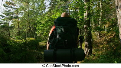 Active man with large backpack walking in beautiful forest landscape at sunset
