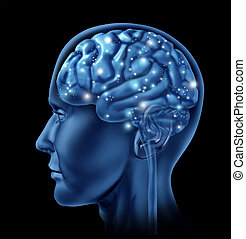 Active Neuron Function - Brain active mental function as a ...