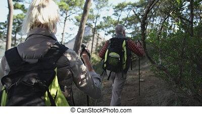 Active senior couple walking on mountains