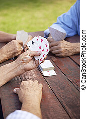 Active seniors, group of old friends playing cards at park