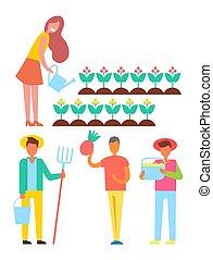 actividades, conjunto, gente, granja, ilustración, vector