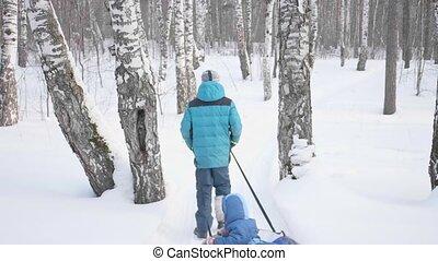 activités, marche, extérieur, hiver, deux, promenade, park., sleigh., équitation, enfants