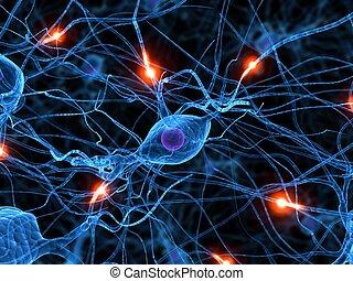 activo, nervio, célula