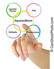 acuacultura