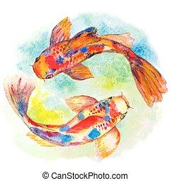 acuarela, dibujado, mano, peces, koi