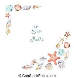 acuarela, esquinas, marco, conchas de mar