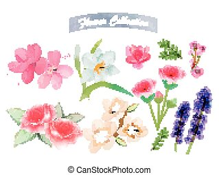 acuarela, flor, elementos