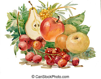 acuarela, flora, collection:, fruits