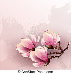 acuarela, magnolia, rama, ilustración