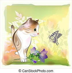 acuarela, tarjeta, gatito, poco, mariposa, saludo, mirar, ...