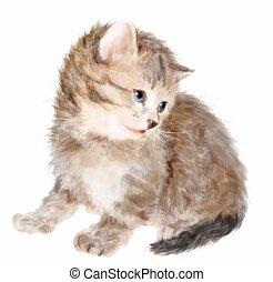 acuarela, velloso, painting., imitación, kitten.
